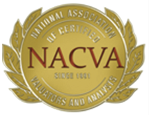 National Association of Certified Valuation Analysts